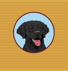 happy labrador retriever portrait of a dog vector image