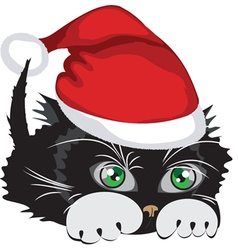 kitten wearing a santa claus hat vector image
