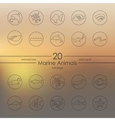 Set of marine animals icons vector image