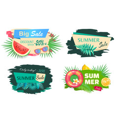 set summertime tags fruits flowers and discount vector image