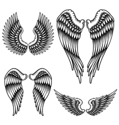 set wings vector image