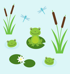 tree frogs with lily and dragonflies vector image