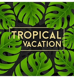 Tropical vacation card with monstera leaves vector
