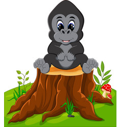 cute baby gorilla sitting on tree stump vector image vector image