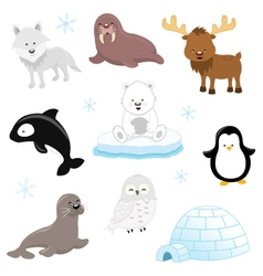 Arctic Animals vector image vector image
