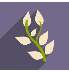 Flat with shadow icon and mobile application basil vector
