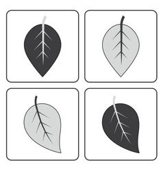 gray leaf set vector image