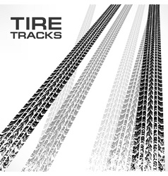 Tire tracks on white text vector image