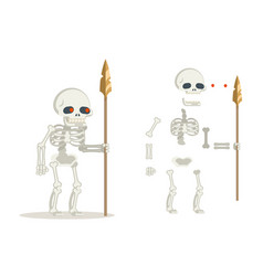 Undead skeleton guardian ancient dead resurrected vector