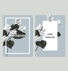 White rain lilies and philodendron silk leaves vector
