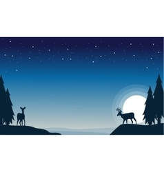 At night reindeer christmas scenery vector
