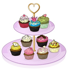 Cupcakes in the cupcake tray vector image vector image