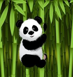 Curious panda vector