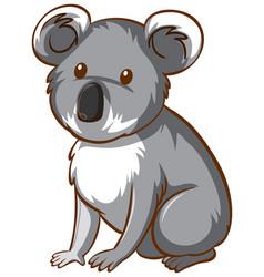 koala bear animal cartoon on white background vector image