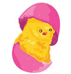 Easter cartoon chicken vector image