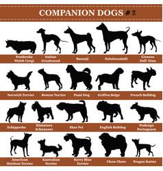 Companion dogs silhouettes 2 vector