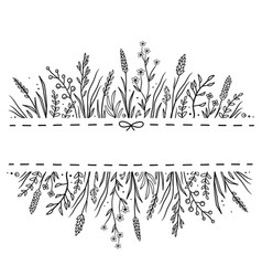 Hand drawn background with wild herbs ad flowers vector