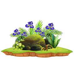 Isolated botanic plant for decoration vector