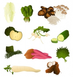 Japanese vegetables vector image