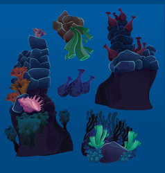 Set of marine plants corals and rocks vector
