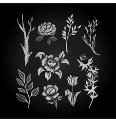 Fantasy Hand Drawn Flower and Plant Set vector image