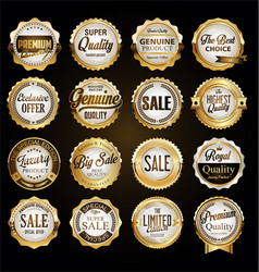 collection vintage retro premium quality vector image