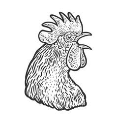 crowing cock head sketch vector image