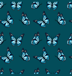 flying and sitting butterflies with blue wings vector image