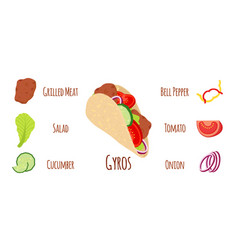 gyros ingredients - meat vegetables flat style vector image