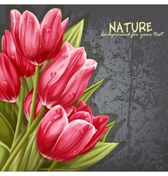 preview background bouquet pink tulips for your vector image