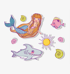 set woman mermaid with shark and shells vector image