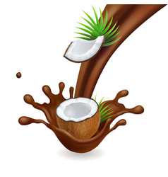 splashing chocolate and coconut nut in chocolate vector image