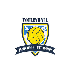 volleyball badge vector image
