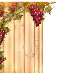 red grape vine frame vector image