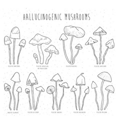 set hallucinogenic mushrooms vector image vector image