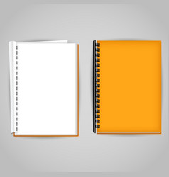 yellow brochure covered and open vector image