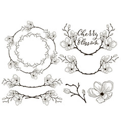 Cherry blossom design dividers frames and vector