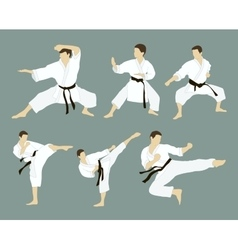 Karate icon set vector