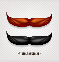 Mustache isolated on white black and brown vector