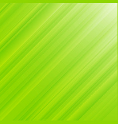 nature green leaves background and texture vector image