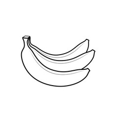 Bananas sign vector