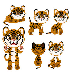 cartoon tiger in different poses and mood vector image