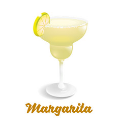cocktails margarita vector image
