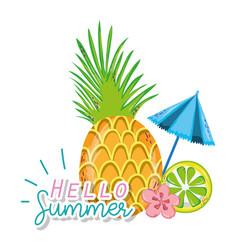 hello summer cartoons vector image