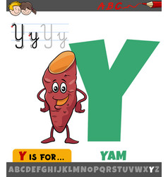 Letter y from alphabet with cartoon yam vegetable vector