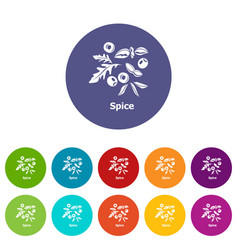 spice icons set color vector image