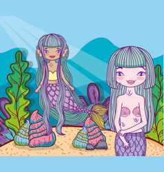women mermaids under water with shells and plants vector image