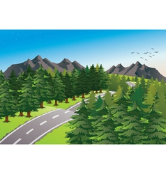 road in beautiful nature vector image vector image