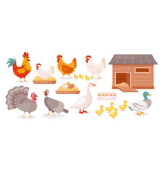 chickens farm birds isolated set goose duck hen vector image