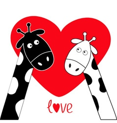 Cute cartoon black white giraffe boy and girl Big vector
